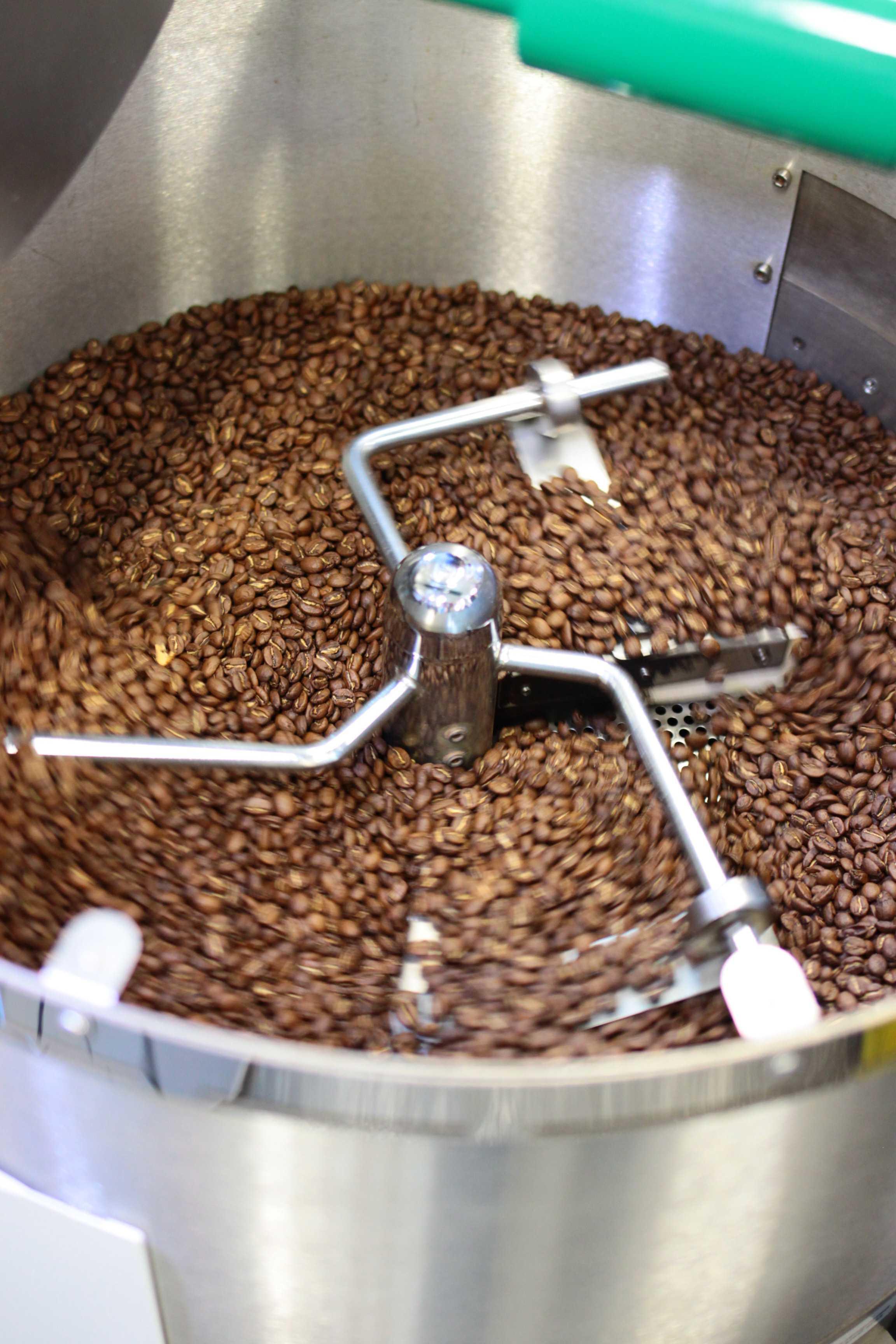 Geröstete Kaffeebohnen in der Kühlung eines Kaffeerösters.